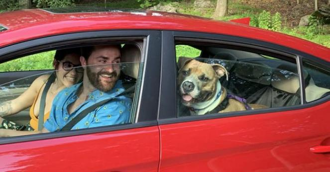 Malcolm the dog sitting in the back seat of a red car with a man and a woman sitting in the front seats
