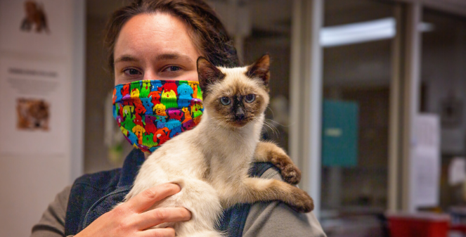 woman in a mask holds a cat