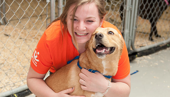 Volunteer Opportunities New York | Best Friends Animal