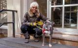 woman on steps next to the gray and white pitbull terrier she'd just adopted