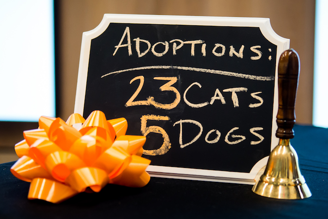 Adopted cat and dog tally