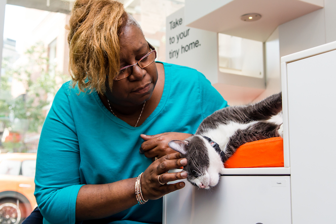 Woman with a cat at the shelter