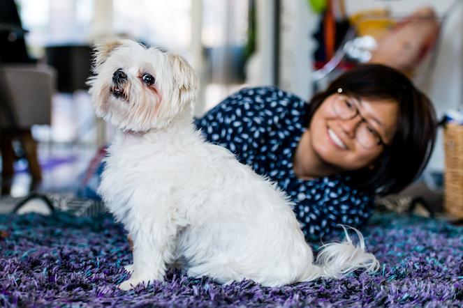 Maltese with his adoptive mom
